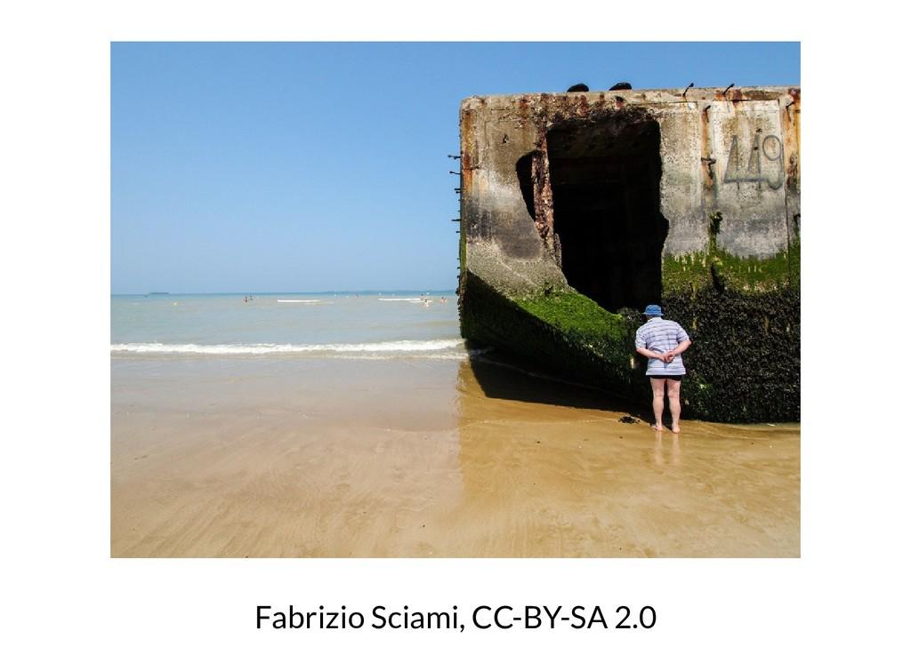Fabrizio Sciami, CC-BY-SA 2.0