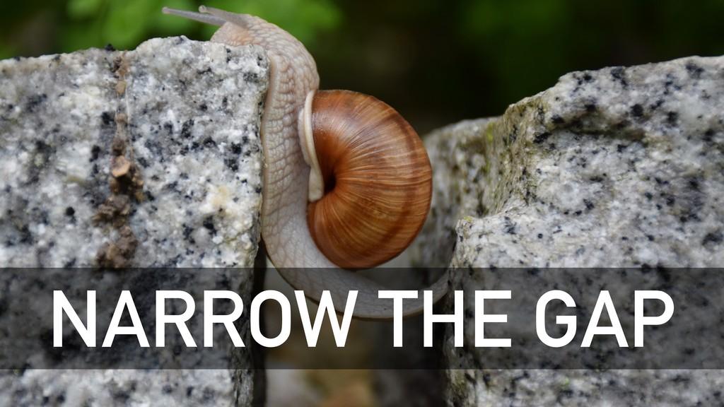 NARROW THE GAP