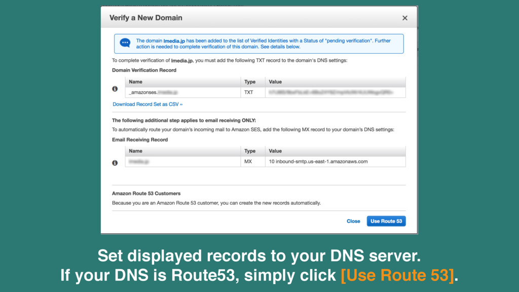 Set displayed records to your DNS server. If yo...