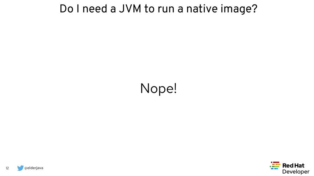 @elderjava 12 Nope! Do I need a JVM to run a na...