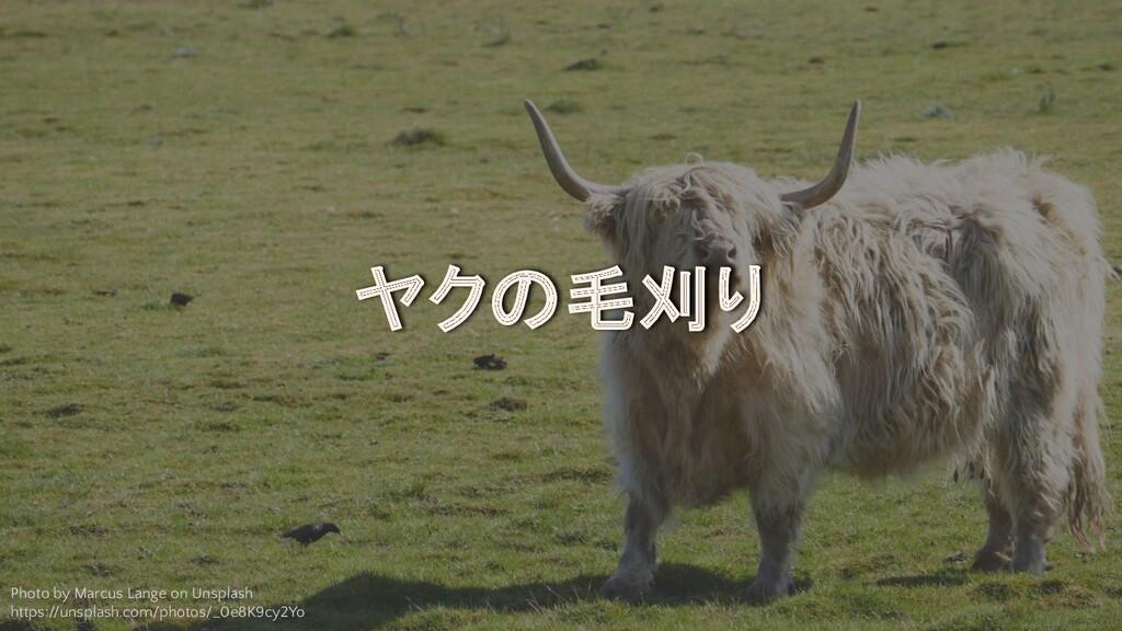 ©2020 RAKUS Co., Ltd. ヤクの毛刈り Photo by Marcus La...
