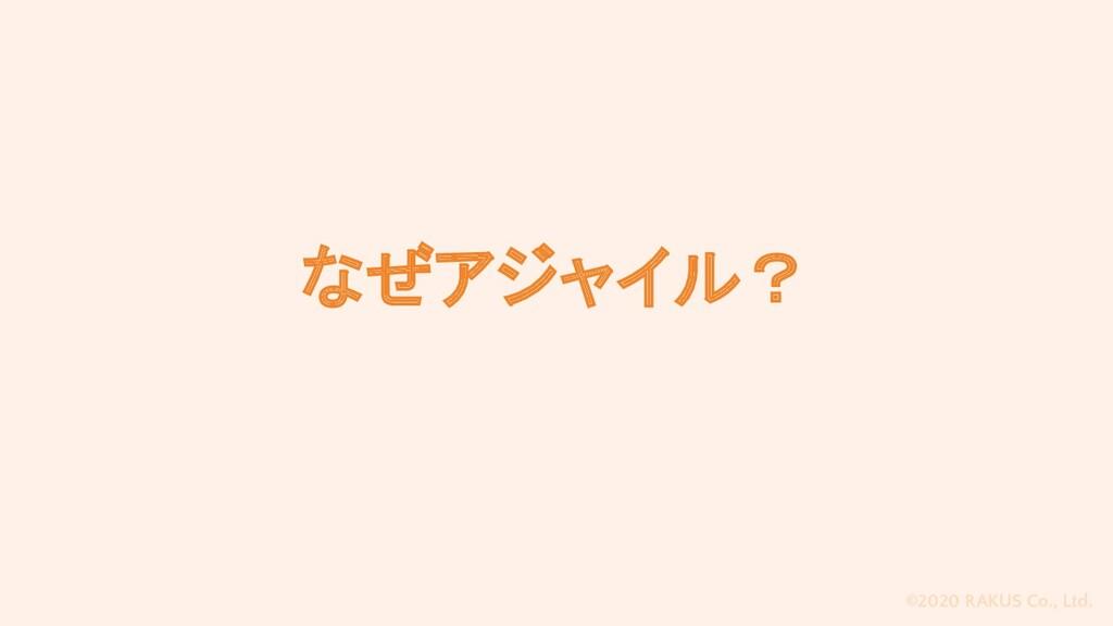 ©2020 RAKUS Co., Ltd. なぜアジャイル?