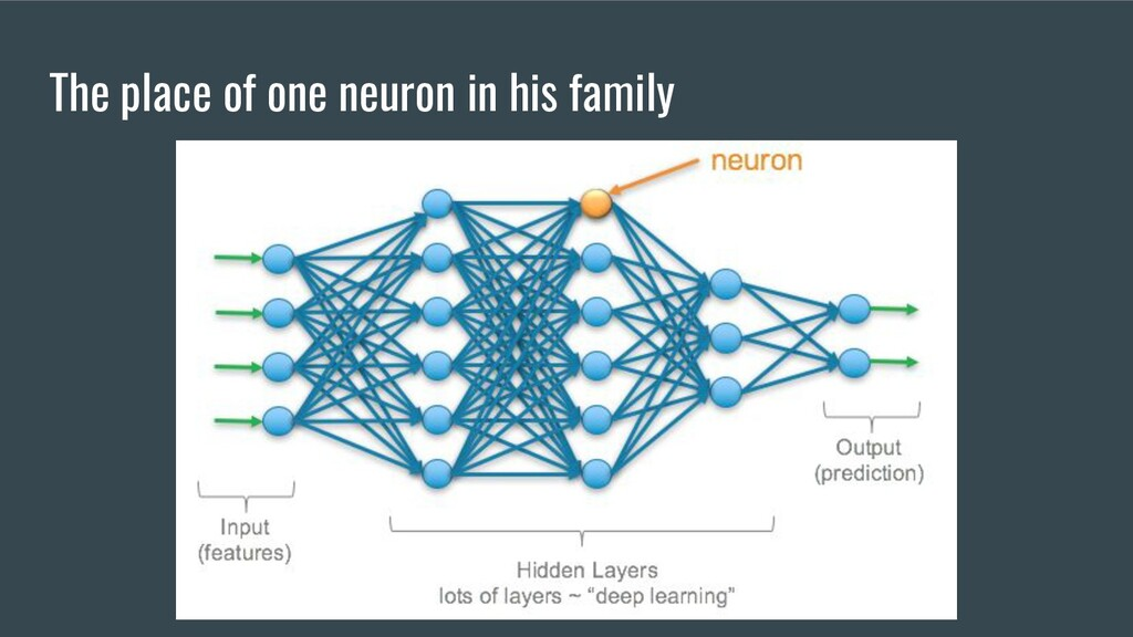 The place of one neuron in his family