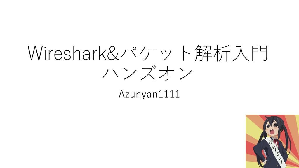 Wireshark&パケット解析⼊⾨ ハンズオン Azunyan1111