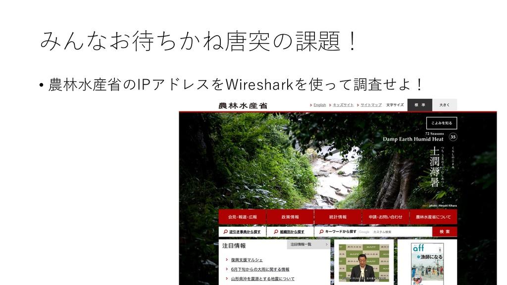 みんなお待ちかね唐突の課題! • 農林⽔産省のIPアドレスをWiresharkを使って調査せよ!
