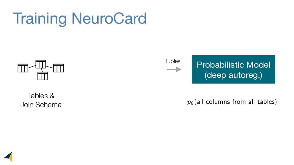 Training NeuroCard Tables & Join Schema Probabi...