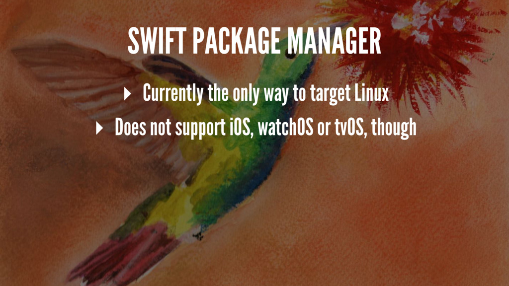 SWIFT PACKAGE MANAGER ▸ Currently the only way ...