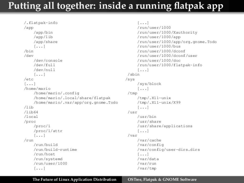 Putting all together: inside a running flatpak a...