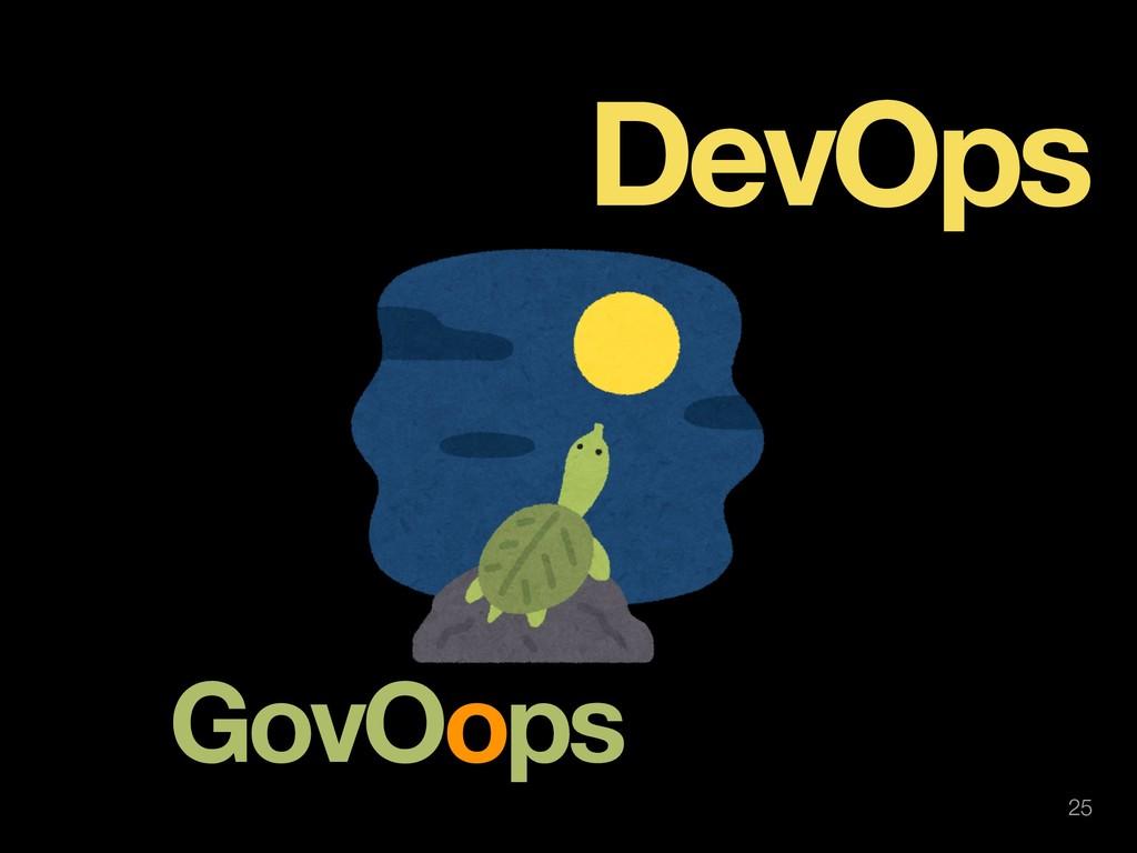 !25 GovOops DevOps