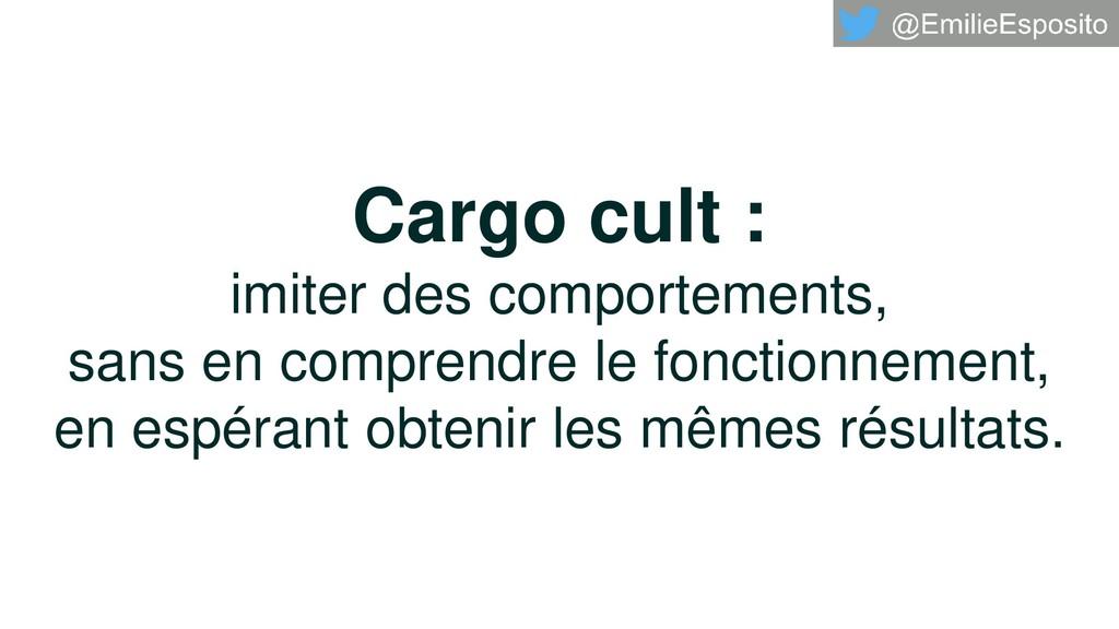 Cargo cult : imiter des comportements, sans en ...