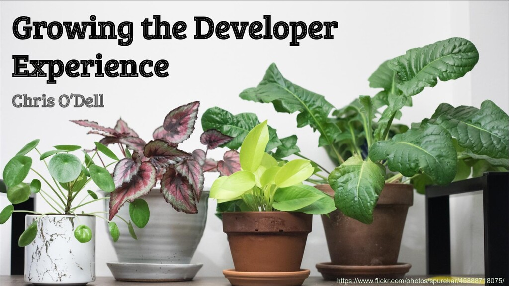Growing the Developer Experience Chris O'Dell h...