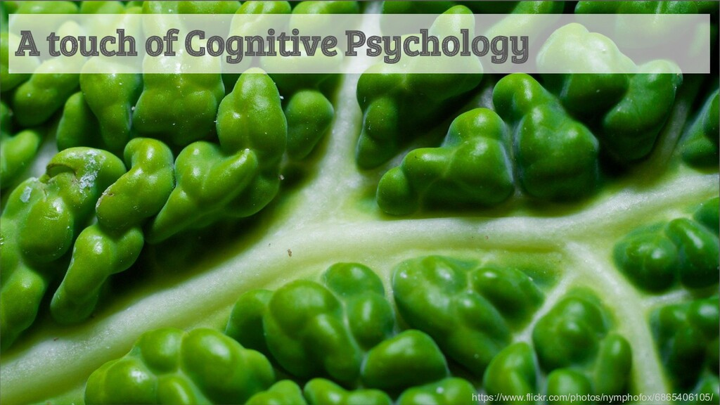 A touch of Cognitive Psychology https://www.fli...