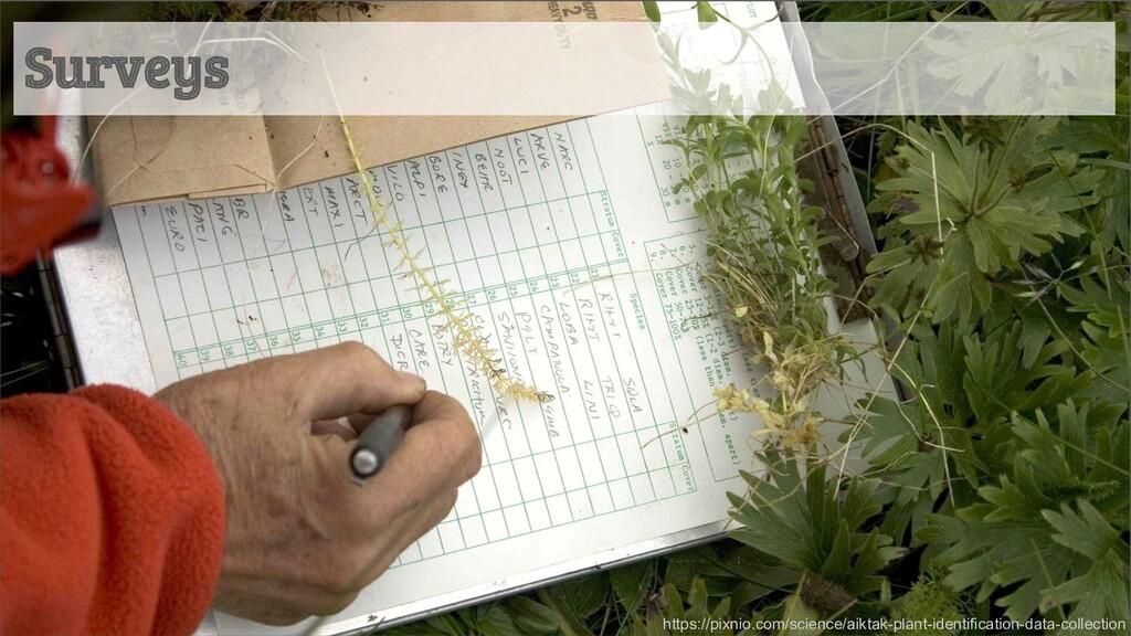 Surveys https://pixnio.com/science/aiktak-plant...