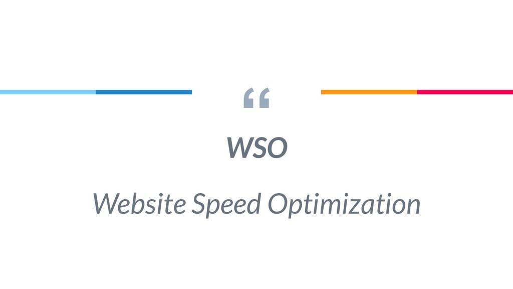 """"""" WSO Website Speed Optimization"""