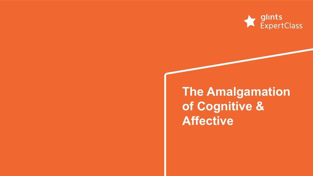 The Amalgamation of Cognitive & Affective