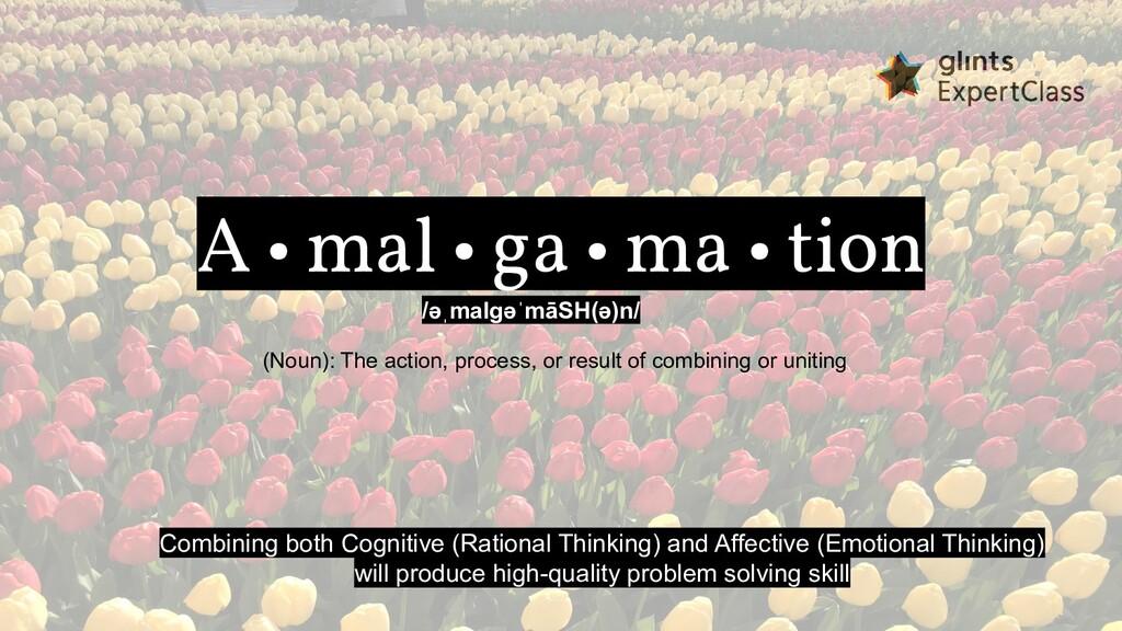 A • mal • ga • ma • tion /əˌmalɡəˈmāSH(ə)n/ (No...