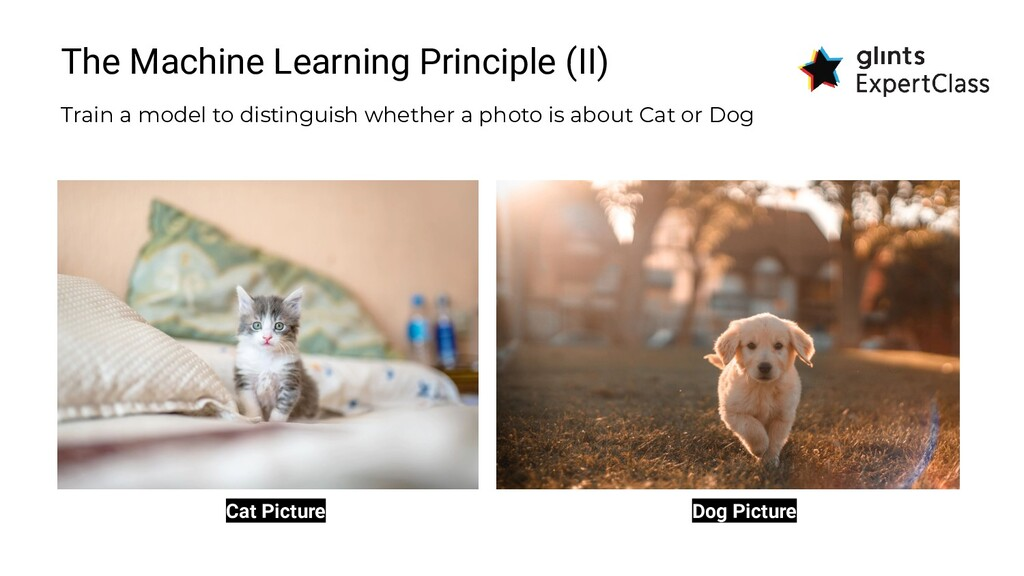 The Machine Learning Principle (II) Train a mod...