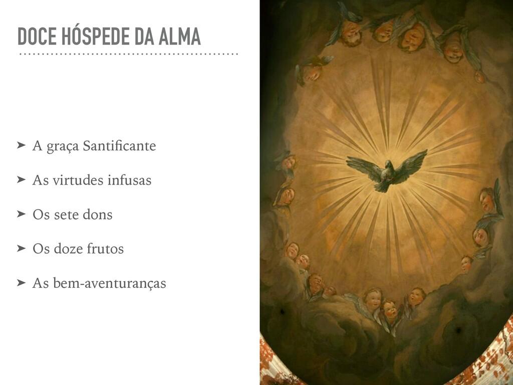 DOCE HÓSPEDE DA ALMA ➤ A graça Santificante ➤ As...