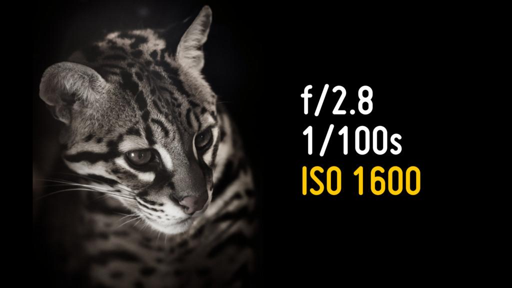 f/2.8 1/100s ISO 1600