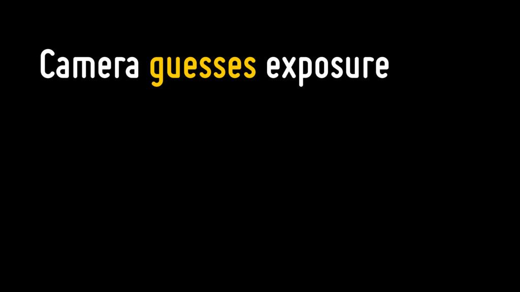 Camera guesses exposure
