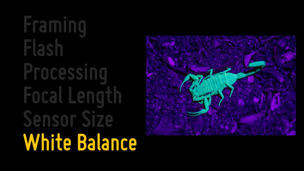 Framing Flash Processing Focal Length Sensor Si...