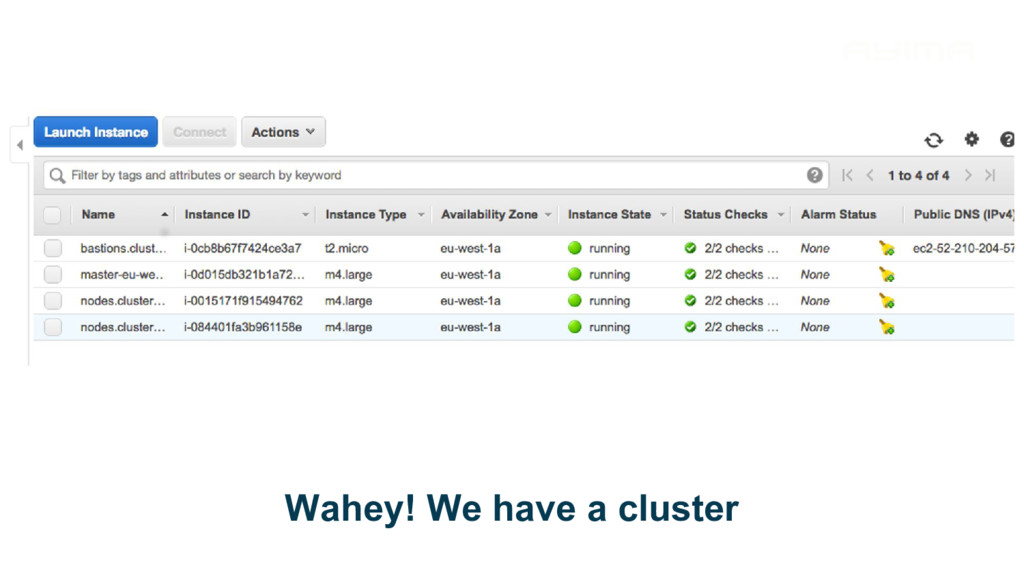 Wahey! We have a cluster
