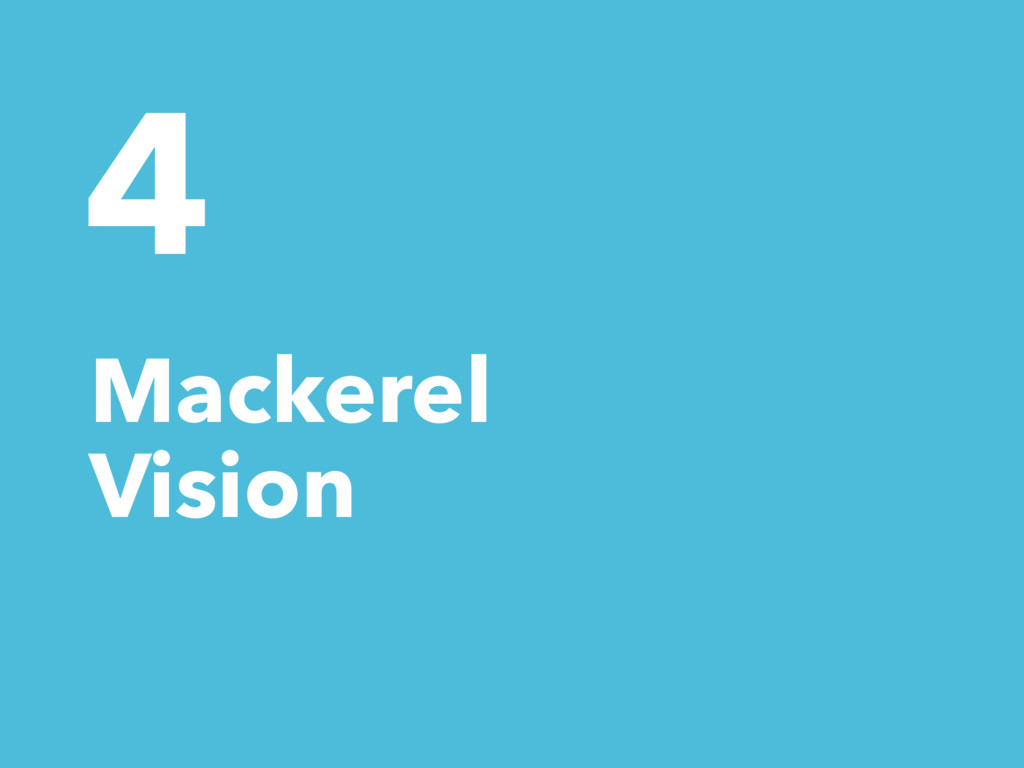 4 Mackerel Vision