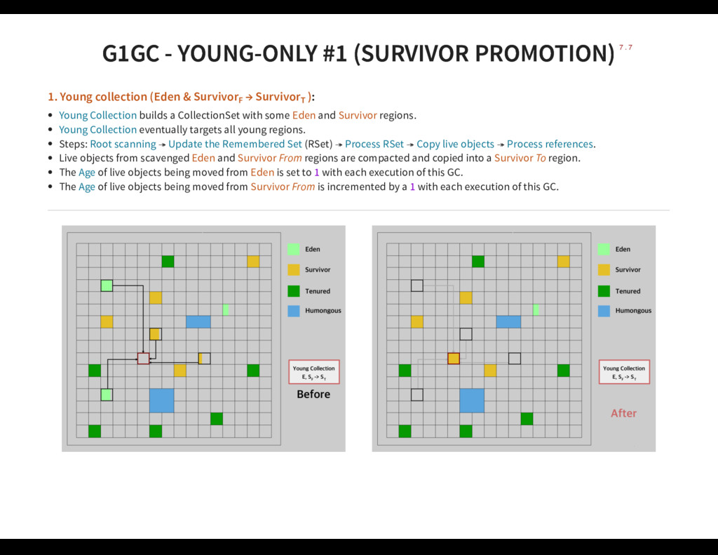 G1GC - YOUNG-ONLY #1 (SURVIVOR PROMOTION) G1GC ...