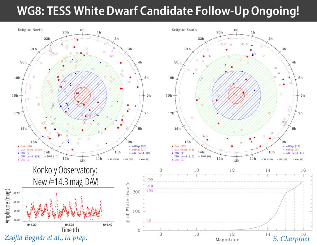 WG8: TESS White Dwarf Candidate Follow-Up Ongoi...