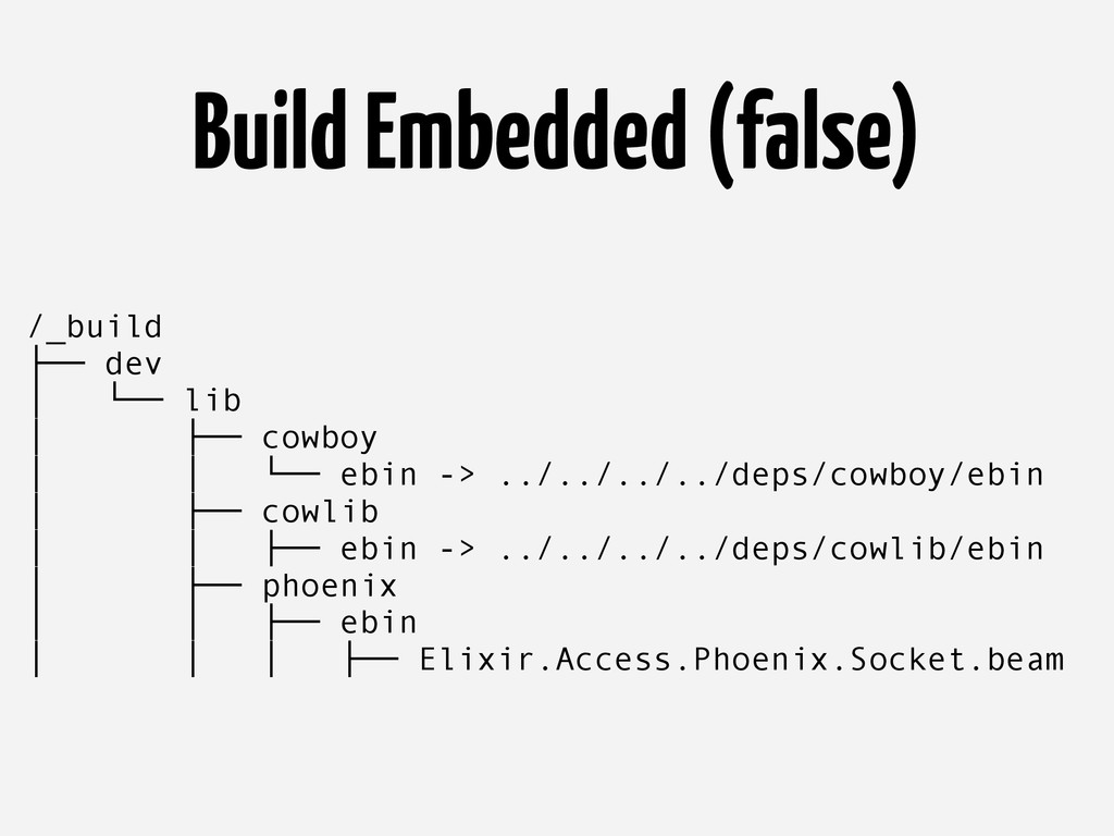 Build Embedded (false) /_build ├── dev │ └── li...