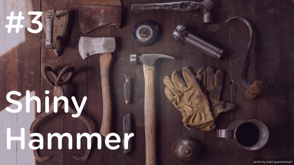 Shiny Hammer #3 photo by todd quackenbush
