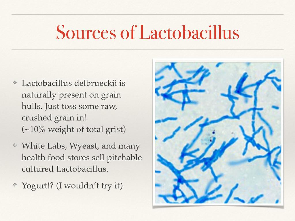 Sources of Lactobacillus ❖ Lactobacillus delbru...