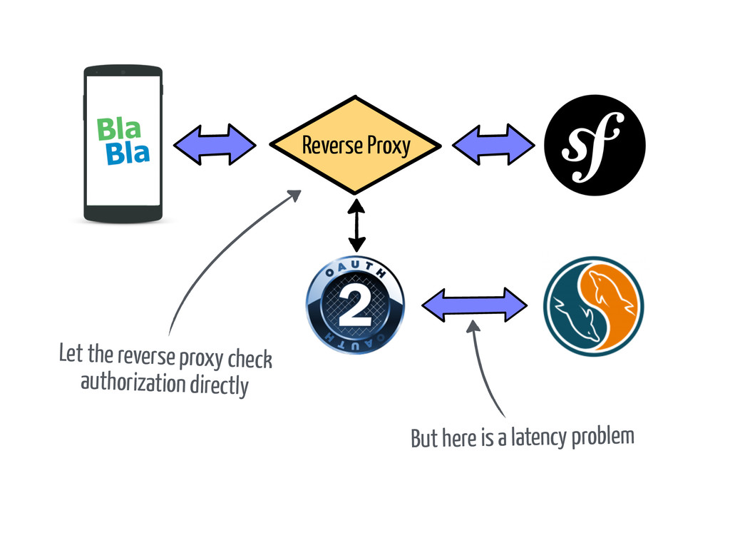 Let the reverse proxy check authorization direc...