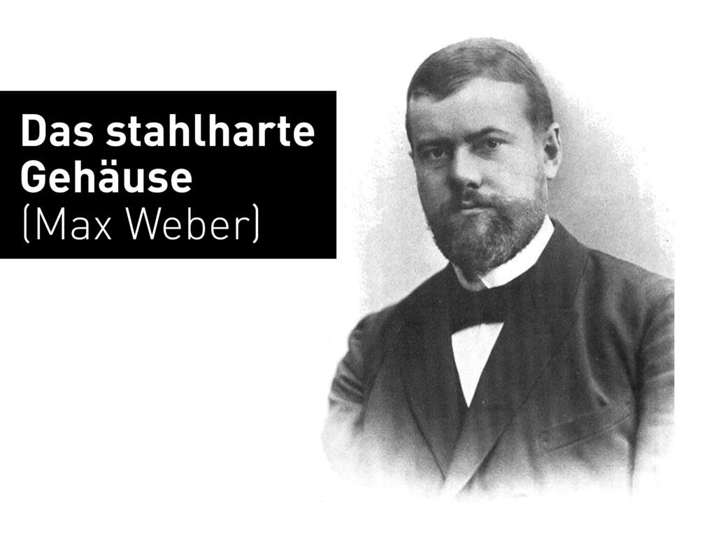 Das stahlharte Gehäuse (Max Weber)