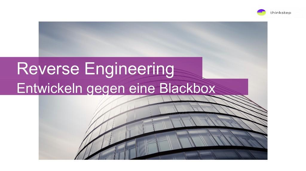 Reverse Engineering Entwickeln gegen eine Black...