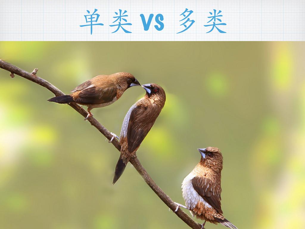 单类 vs 多类