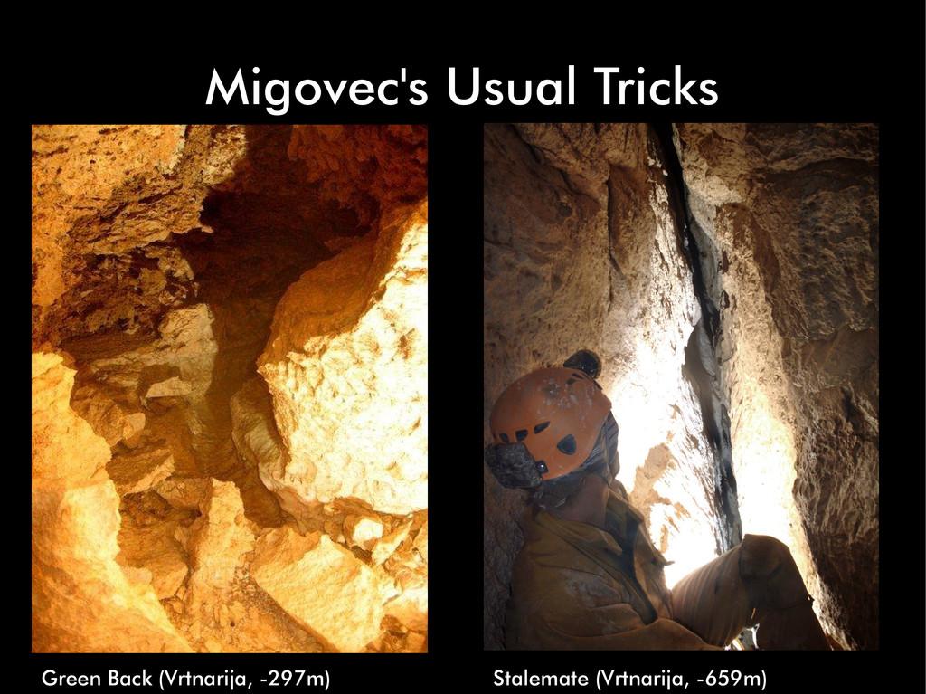 Migovec's Usual Tricks Green Back (Vrtnarija, -...