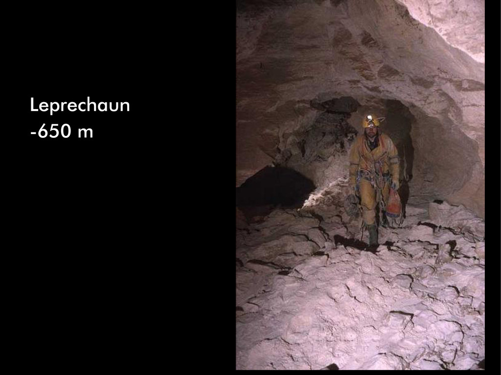 Leprechaun -650 m