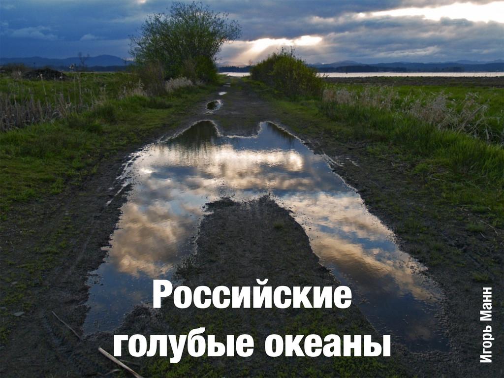 Российские голубые океаны Игорь Манн