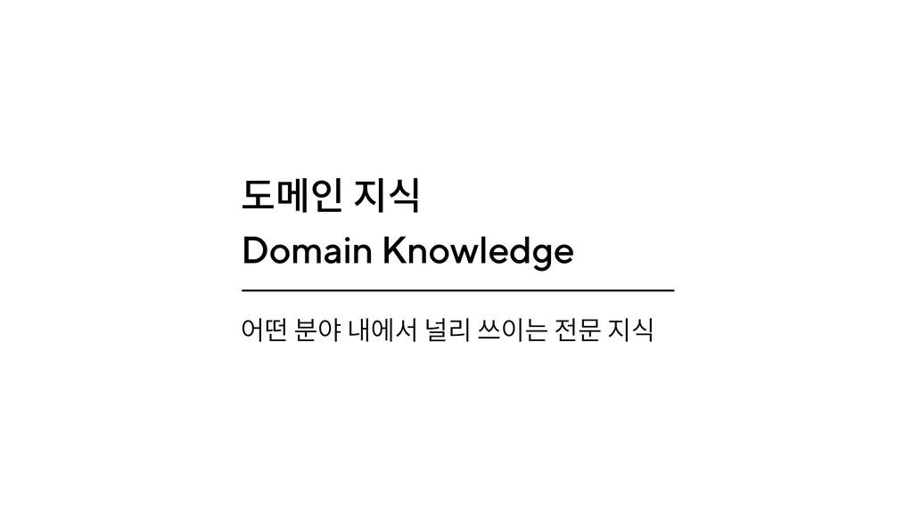 도메인 지식 Domain Knowledge 어떤 분야 내에서 널리 쓰이는 전문 지식
