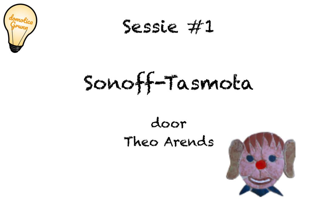 Sessie #1 Sonoff-Tasmota door Theo Arends