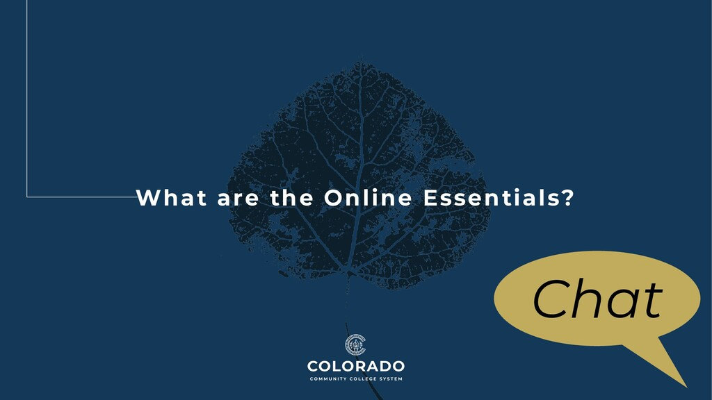 What are the Online Essentials? Chat