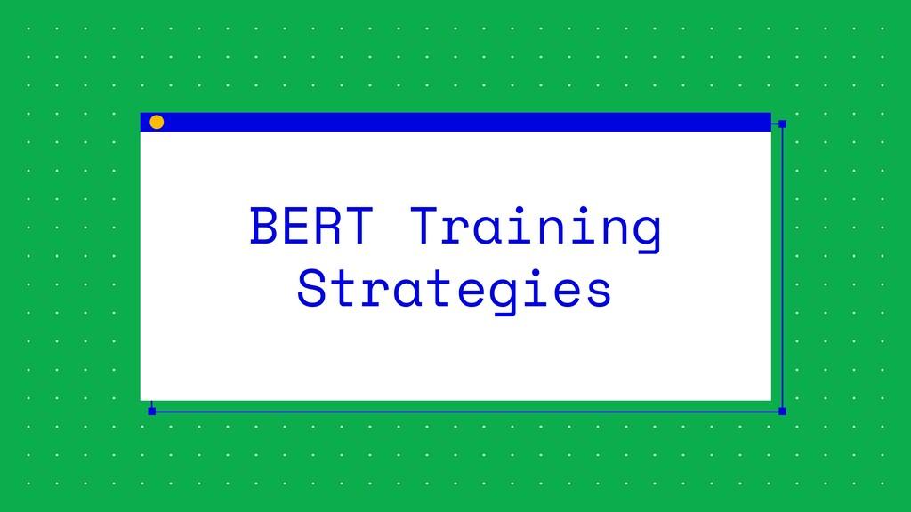 BERT Training Strategies