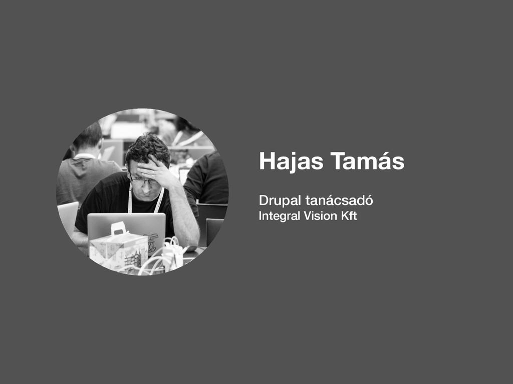 Hajas Tamás Drupal tanácsadó Integral Vision Kft