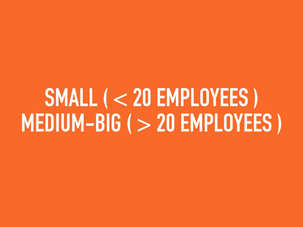 SMALL ( < 20 EMPLOYEES ) MEDIUM-BIG ( > 20 EMPL...