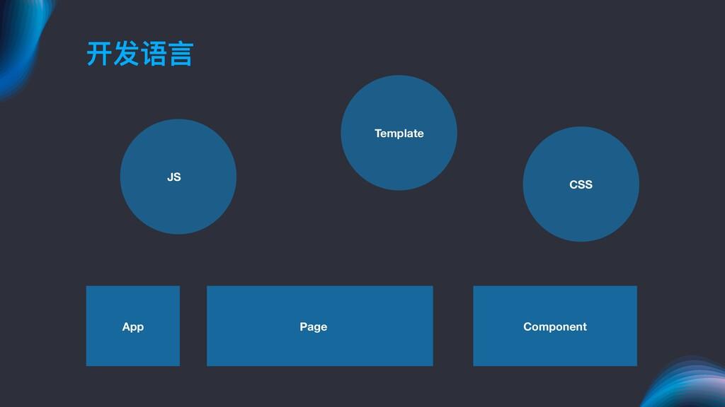 开发语⾔言 JS Template CSS App Page Component