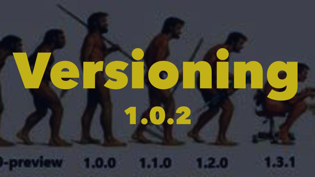Versioning 1.0.2