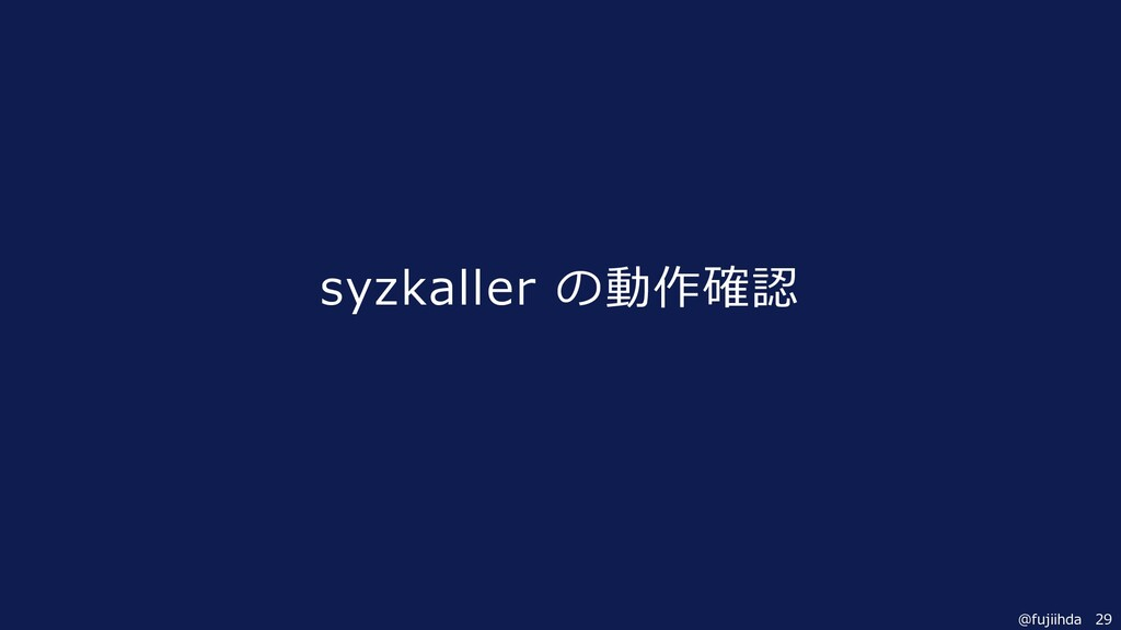 29 @fujiihda syzkaller の動作確認