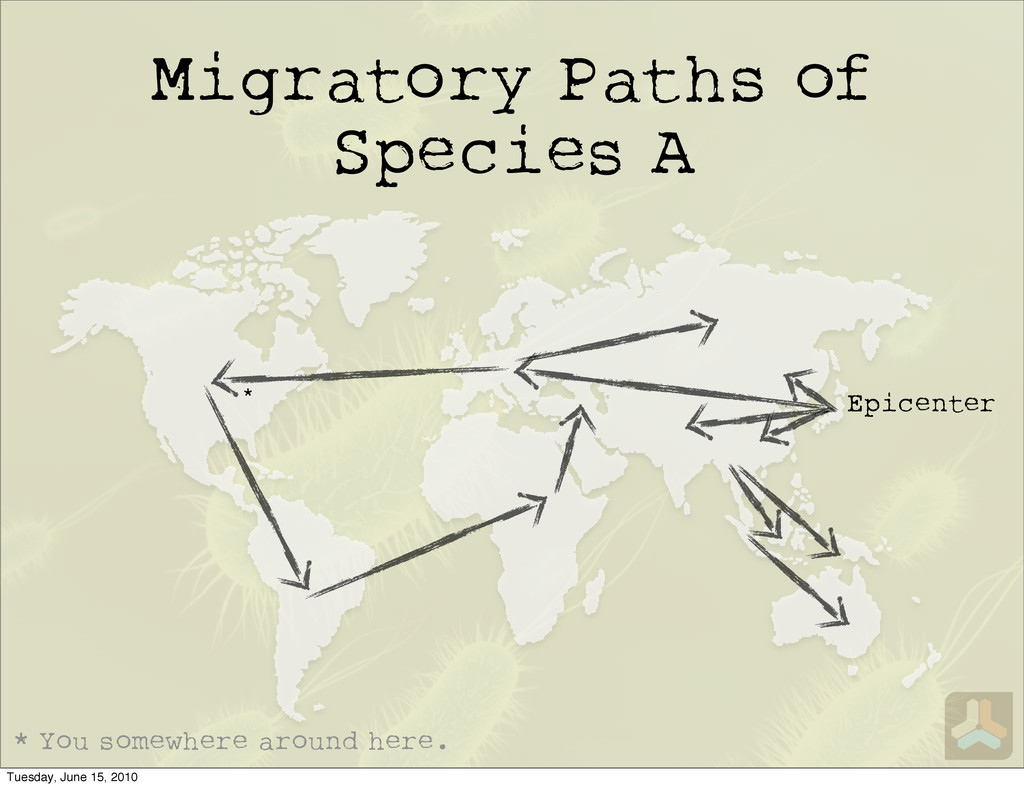 Migratory Paths of Species A Epicenter * You so...