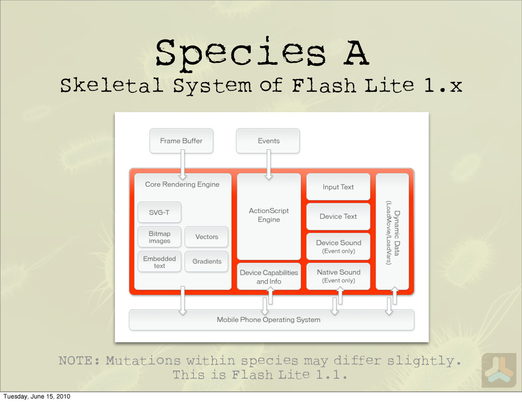 Species A Skeletal System of Flash Lite 1.x NOT...